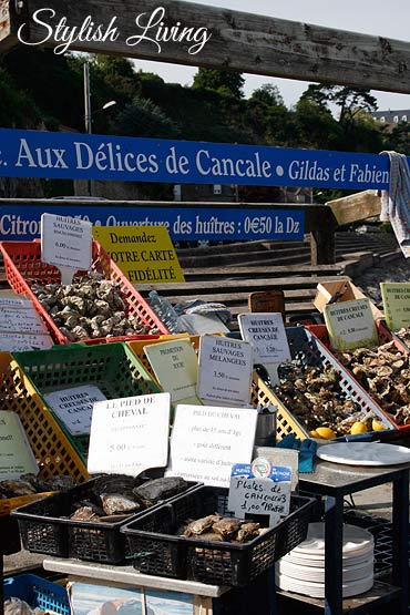 Austern in Cancale