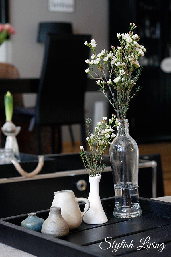 Wachsblumen in Vasen