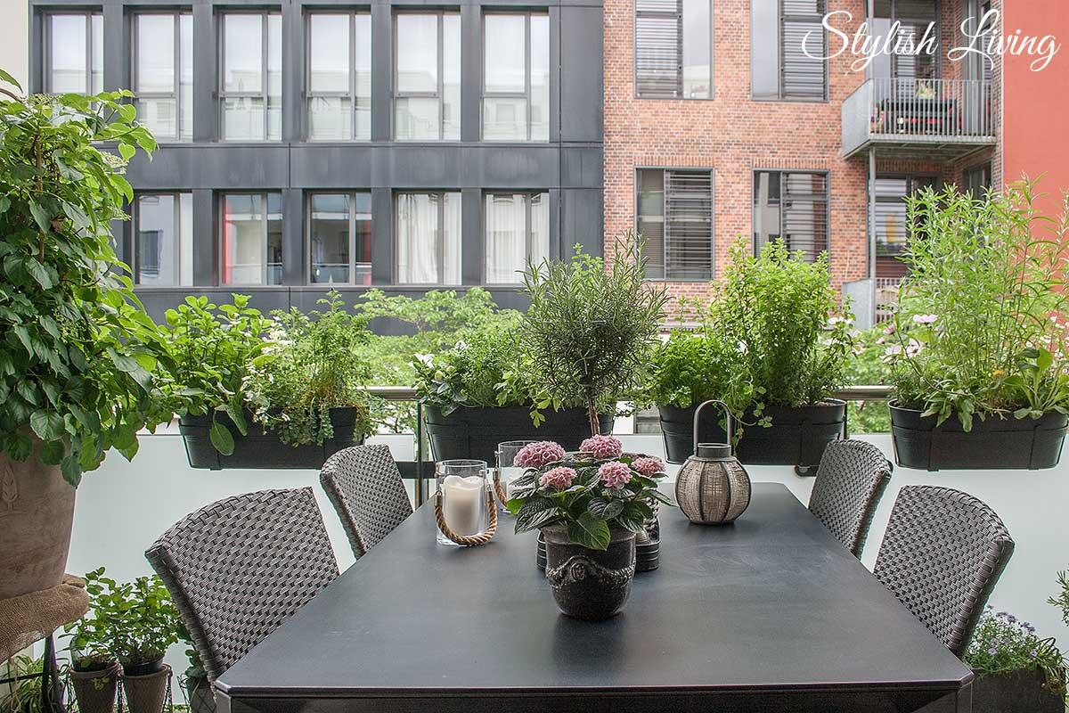 Balkonbegrünung Und Kletterpflanzen, Die Jede Wand Glamouröser ... Krauter Balkon Pflanzen