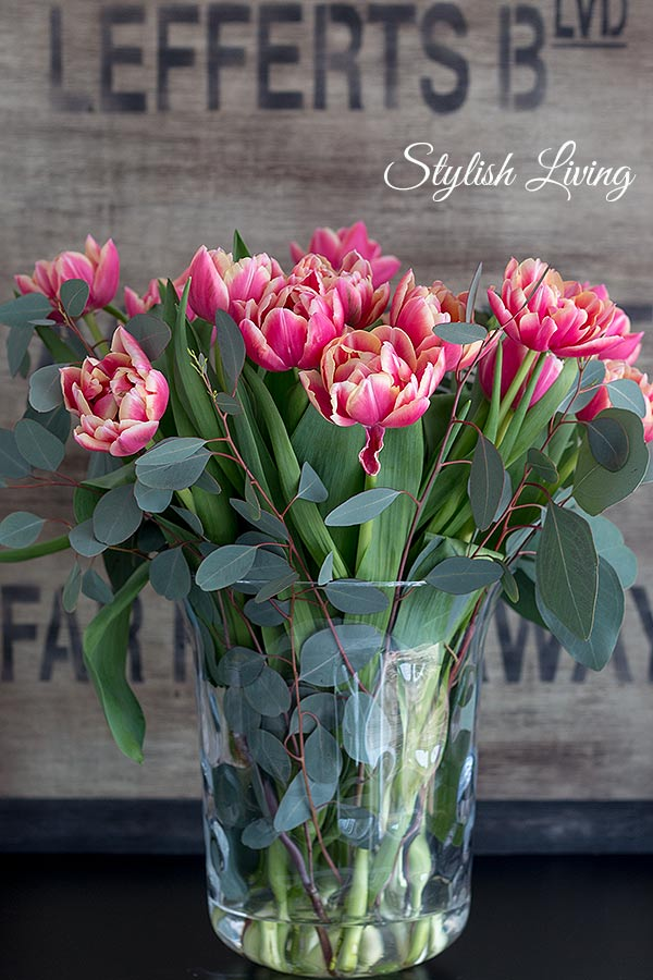 gefüllte Tulpen mit Eukalyptus