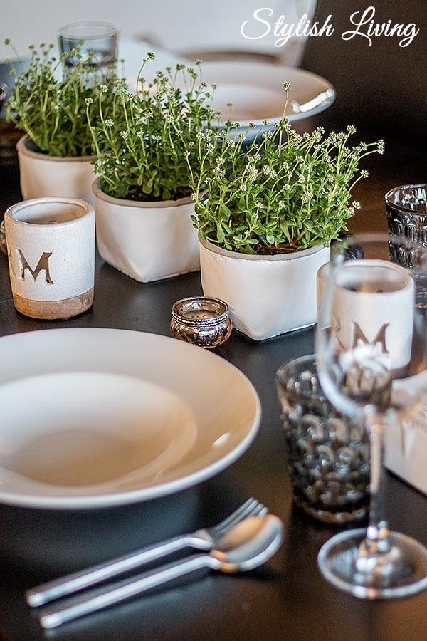 sukkulenten und tulpenliebe und 2 gewinner stylish living. Black Bedroom Furniture Sets. Home Design Ideas