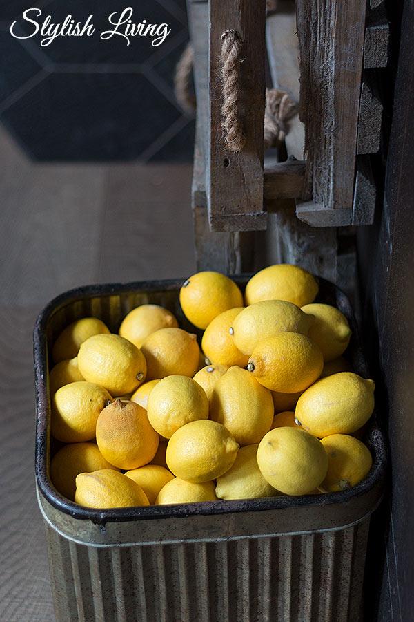 Stillleben mit Zitronen im Neni Hamburg