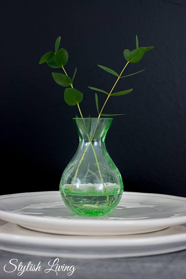 Stillleben Vase mit Eukalyptus