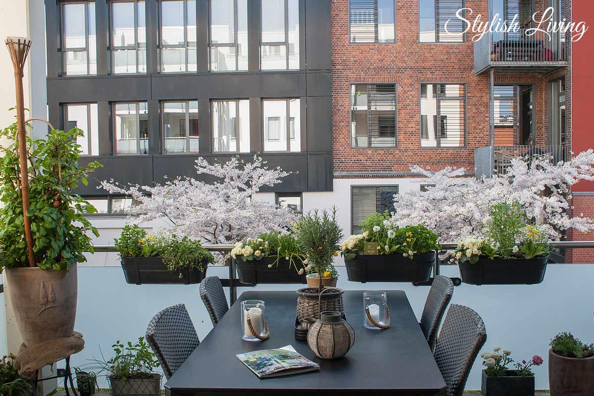 Balkonbepflanzung mit Kräutern