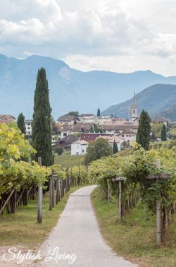 Kaltern am See Südtirol