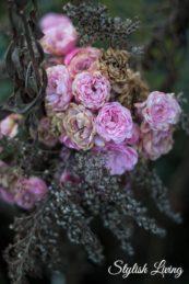 Rosenblüte im November in Lieblingsomas Garten