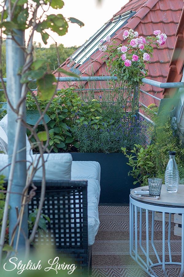 Dachterrasse gestalten mit Pflanzen und Outdoorsofas für die Gemütlichkeit