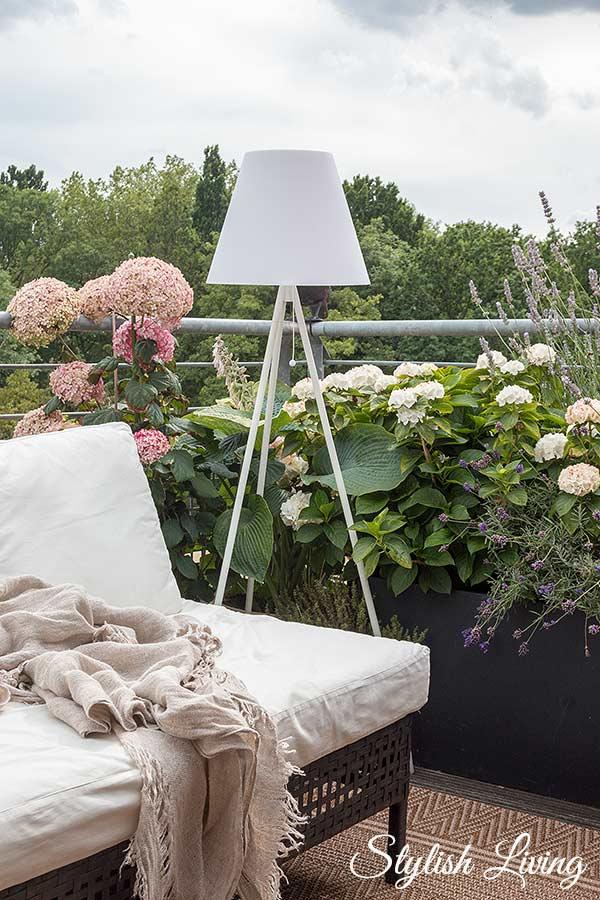 Dachterrasse gestalten mit Pflanzen: Hortensien, Funkien, Lavendel