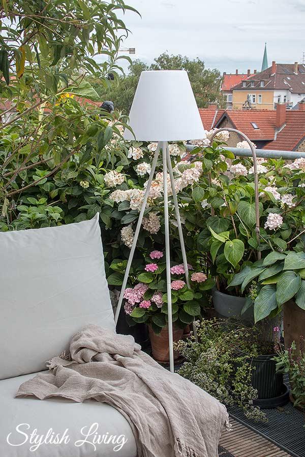 Dachterrasse gestalten mit Pflanzen: Hortensien, Funkien und Schmetterlingsflieder
